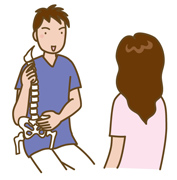 骨格の説明しているイラスト