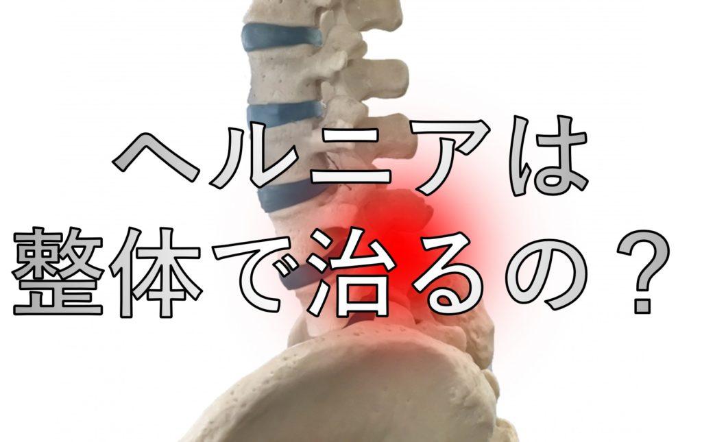 ヘルニアの部分が赤くなっている骨格模型
